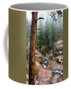 Trees In The Fog Coffee Mug