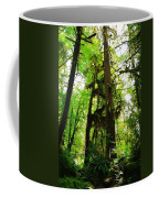 Trees In The Hoh National Rain Forest Coffee Mug
