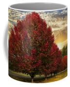 Trees On Fire Coffee Mug by Debra and Dave Vanderlaan