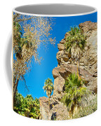 Trees On South Side Of Andreas Canyon In Indian Canyons-ca Coffee Mug
