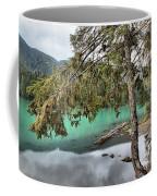 Trees Overhanging Cheakamus Lake Coffee Mug