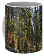 Trees With Moss In The Forest Coffee Mug