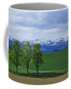 Trees With Mountains Coffee Mug