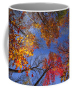 Treetops In Fall Forest Coffee Mug