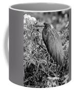 Tri-color - Bw Coffee Mug