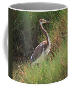 Tri-color Heron Coffee Mug