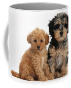 Tricolor Merle Daxie-doodle And Red Toy Coffee Mug