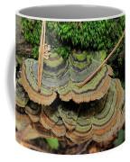 Tricolor Turkeytail Coffee Mug