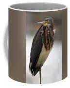 Tricolored Heron 3 Coffee Mug