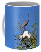 Tricolored Heron And Snowy Egret Coffee Mug
