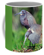 Tricolored Heron Male And Female At Nest Coffee Mug
