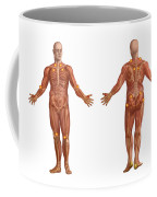 Trigger Points On The Human Body Coffee Mug