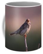 Triguero Corn Bunting  Coffee Mug