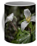 Trillium - After The Rain Coffee Mug