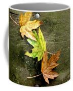 Trio Of Leaves Coffee Mug