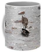 Trio Of Shore Birds Coffee Mug