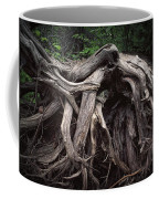 Troots Of A Fallen Tree By Wawa Ontario Coffee Mug