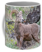 Wild Bighorn Coffee Mug