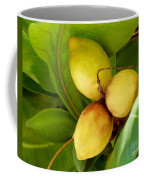 Tropical Almond Coffee Mug