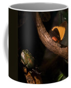 Tropical Butterfly And Rhinoceros Beetle Coffee Mug