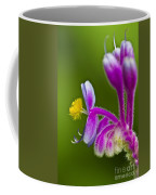 Tropical Flower Detail Coffee Mug