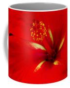 Tropical Hibiscus - Starry Wind 02a Coffee Mug