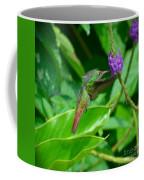 Tropical Hummingbird Coffee Mug