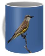 Tropical Kingbird Coffee Mug