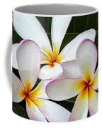 Tropical Maui Plumeria Coffee Mug
