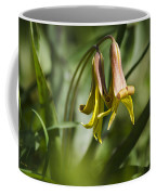 Trout Lily Flowers Coffee Mug