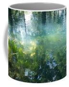 Trout Pond Coffee Mug