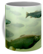 Trout Underwater Coffee Mug