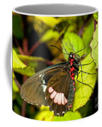 True Cattleheart Butterfly Coffee Mug