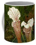 Trumpet Flower Coffee Mug
