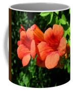 Wild Trumpet Vine Coffee Mug