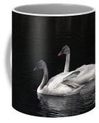 Trumpeter Swan Cygnets Coffee Mug