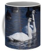 Trumpeter Swan Pair Coffee Mug