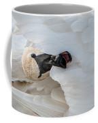 Trumpeter Swan Peek-a-boo Coffee Mug