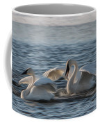Trumpeter Swans Playing Tag Coffee Mug