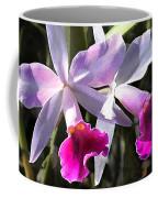 Trumpeting Purple Cattleya Orchids Coffee Mug