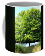 Trunk Unseen Coffee Mug