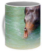 Trunk Up Coffee Mug
