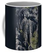Tsingy De Bemaraha Coffee Mug