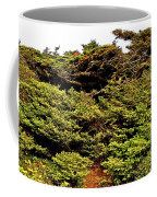 Tuckamore At Green Point Coastal In Gros Morne Np-nl Coffee Mug