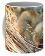 Tuckered Out Coffee Mug