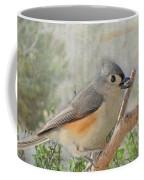 Tuffted Titmouse Early Spring Coffee Mug