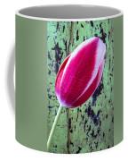 Tulip Against Green Wall Coffee Mug