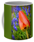 Tulip And Muscari  Coffee Mug