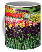 Tulip Field 1 Coffee Mug