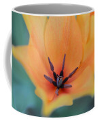 Tulip In Orange Coffee Mug